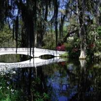 Magnolia Plantation Bridge